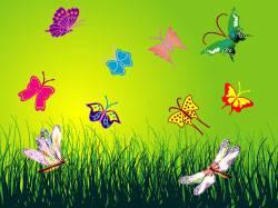 وکتور پروانه های در حال پرواز با پس زمینه زیبا2
